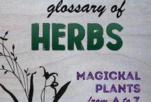 Oils, Herbs & Medicinal Plants / Essential oils, carrier oils, herbs, plants, natural remedies, natural health