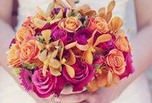 Pretty Flowers.