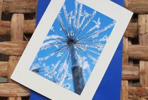    cards by saraphir    / Greeting cards made with photos taken by me and mounted on recycled card.