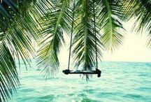 Ocean / Beautiful pics of oceans,waves   and ocean life.