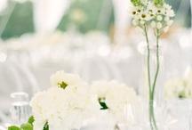 Reception / by Katie Hillgrove