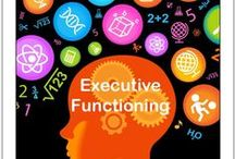 Executive Functions /  Executive Functions (EF) refer to the complex set of mental skills that help a person plan, execute and achieve goals. EF skills include the ability to manage time and attention, plan and organize thoughts and materials, remember details and multi-step problems, and initiate and complete tasks. The new understanding of ADHD proposes that delayed development of EF (3 years or more behind) is responsible for many of the symptoms of the disorder.