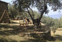 Filion Travel Tips / Secret travel tips all over Greece