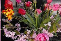 Tulpencreaties Marie-Fleurie Bloemenatelier / Van tulp tot tulpenvazen