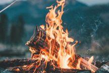 Camping future / Camping future.Hunting.