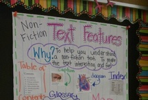 Education  / Great ideas for the classroom.