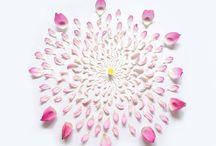 Store og små ideer / Smukke blomster til glæde, overraskelse og indpiration.