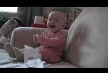 LOL / From babies eating lemons for the first time to quirky cats, here's what's making us laugh!