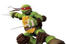 Meet the Turtles / Meet the Teenage Mutant Ninja Turtles characters!