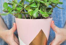 Decoration florale / Si toi aussi tu n'as pas la main verte... Abonnes toi ;)