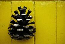 Door bells, door handles, door knockers / Hello, is anybody there?