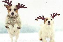 winter things :3
