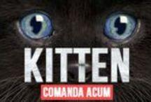 Tricouri The Mountain Cats / Tricouri cu pisici pentru adulti si pentru copii, cu imprimeuri 3D. Tricouri The Mountain din colectia Cats.