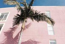 Pink Pastel