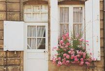 Doors & Windows & Houses