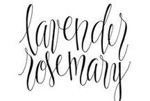 Typography / by Bess Callard