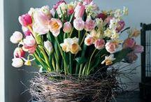 springtime baskets