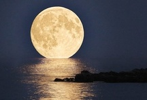 By the Light of the Silvery Moon / by Cheryl