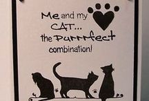 The Purrfect Combination Stamp Set / Cards made using our 'The Purrfect Combination' stamp set