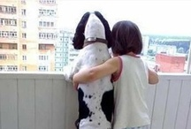 Animals - Our Friends / Animals always are the best friends of humans. This album shows the romance and friendship between us and them : )