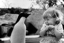 mooie kindertjes / Alle kindjes zijn mooi..