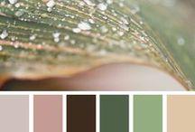 Colour Palettes / a selection of colour palettes