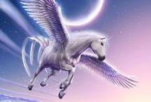 Beast ● Pegasus