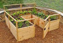 Huerto / todo lo que tiene que ver con la horticultura. clases de huertos y formas de plantar las diferentes hortalizas
