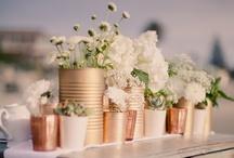 DIY/Cost Friendly Weddings