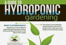 Hydroponics / Www.lvhydro.com