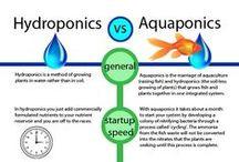 Aqua vs Hydro