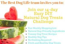 Free 14-day Easy DIY Natural Dog Treats Challenge / We are super excited to invite you all to join our 14-day fun challenge, where we will be making homemade easy NO COOKING required treats for our furry canine loves! Starts August 17! Sign Up here ---- > http://bit.ly/1DwWmEE