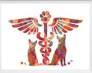 Veterinary Art By MimiPrints