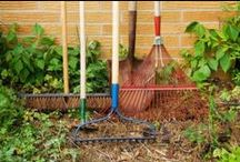 Gardening Tips / Helpful tips and tricks for the frugal gardener -- ---BLOGGERS please only 2 pins per day --- thanks!