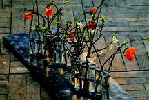 Pour les Fleurs / On adore tous et toutes les fleurs... Mais que seraient-elles sans leurs vases ?