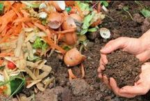 Cheap Composting / Composting tips that will cost you little and save you money in the garden.
