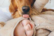 My Love / Animal Cuteness