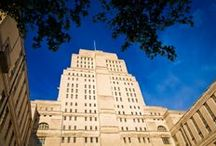 Senate House | The Architecture / A selection of photographs showcasing the Art Deco exterior and interior of one of first sky scrapers in London.
