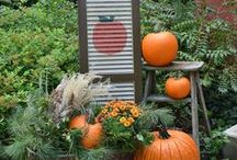 Fall.....ing into decorating