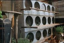 Chicken Coops...Vintage etc. / by Hammack's Texas Favorites & Country Treasures