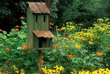Bird Houses / by Hammack's Wood-N-Cloth Crafts