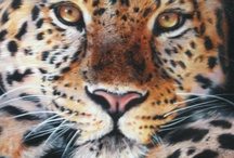 Animals / Find a fine art painting here that will satisfy your animal-loving heart every morning when you see it.