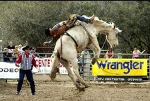 Western, Rodeo, Cowboy Style  / by Debbie Chandler