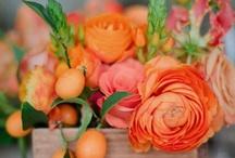 Blumen { orange - red }