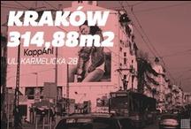 Kraków/Karmelicka/314m2