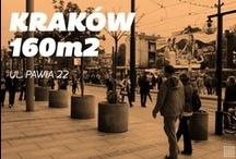 Kraków/Pawia/160m2