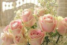 FLOWERS / HEAVEN