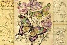 Fjärilar/Insekter