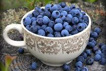 Blueberry Heaven! / Welcome to this luscious blueberry board.  Please only pin things related to blueberries.  Pin as much as as often as you like.  Please leave a comment on one of my pins or my message board if you would like to join.  No spam or you will be blocked and deleted.  Enjoy!