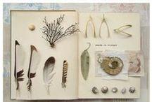 Carnets, papiers, trésors d'écriture